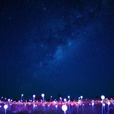 【澳大利亚】你眼里流过南半球最璀璨的星河(上)