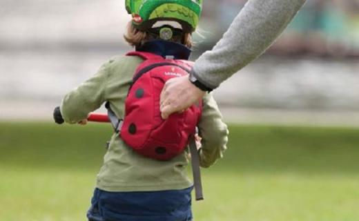 LittleLife Toddler儿童书包:可爱瓢虫外形,2L容量适合日常使用