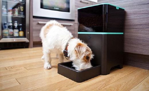 能远程操控的的喂食器,还能规划宠物的饮食