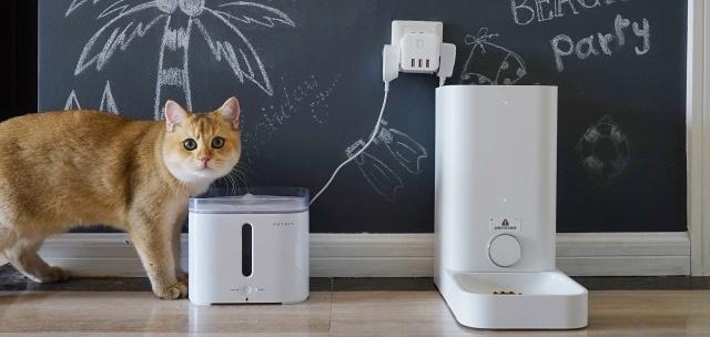 智能喂養,獨自一貓也能好好吃飯-小佩智能喂食器mini