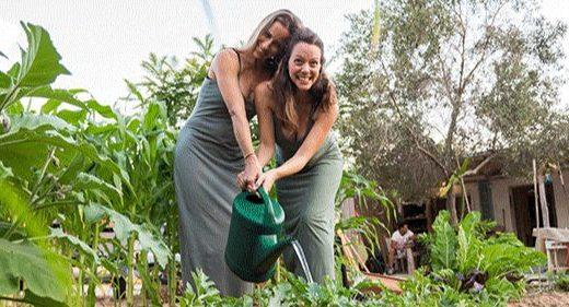 可折疊家用沼氣池,這款垃圾轉化神器節能又環保