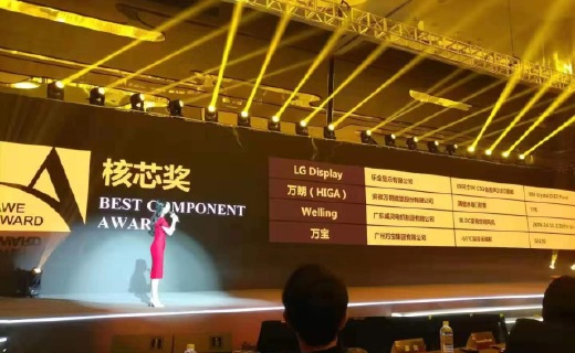 LG Display荣获艾普兰核芯?#20445;琌LED电视获大众行?#31561;?#23041;认可