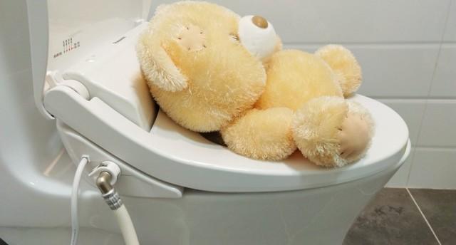 日本松下DL-RN30CWS智能马桶盖,让人信赖的个性化舒爽体验