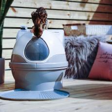 CatGenie 猫洁易 全自动猫厕所