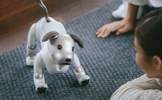 养狗太麻烦?索尼Aibo机器狗历经20年再现身