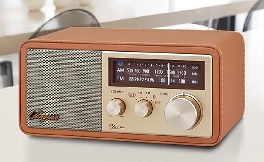 山進爵士藍牙音箱,能當收音機的音箱