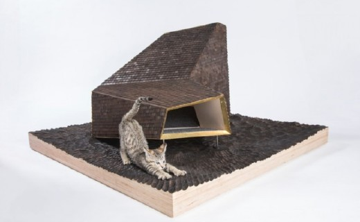 为减少流浪猫项目,建筑师设计喵星人庇护所