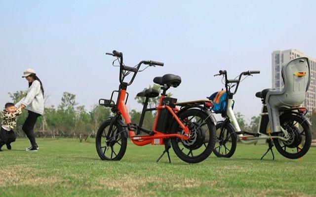 上海永久袋鼠iK1家用電踏車