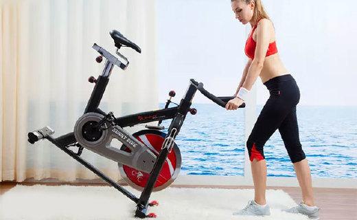 SUNNY健身車:專業級品質,噪聲低,懶癌在家輕松減肥