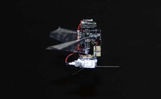 韓國大學研發出世界最輕的兩翼機器人,可用于研究昆蟲飛行機制