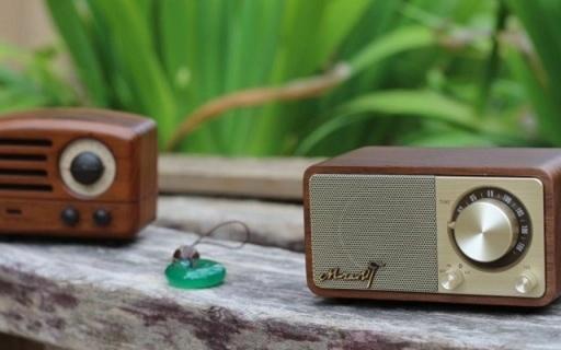 复古颜值有味道,音质不俗是音箱还是收音机 — 山进莫扎特和猫王小王子音箱对比评测