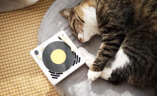 可以触摸的音乐,趣味满格的?#36739;?| Beefo复古小唱机