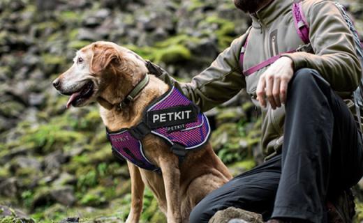 小佩背心式狗狗牵引绳:飞织面料舒适透气,三角框架控制更省力