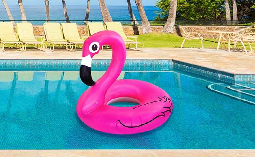 旱鸭子不会游泳怎么办?#31354;?#20010;大鹅让你这个?#22902;?#38378;耀整个泳池