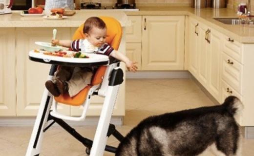 Peg-Perego兒童餐椅:安全防傾倒,一鍵控制輕松移動