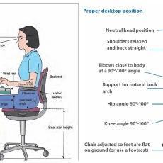 人體工學椅怎么選,科普小知識來啦!