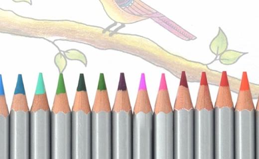 馬可72色油性彩鉛:環保彩芯著色均勻,顏色超全繪畫必備
