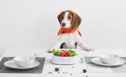小佩FRESH智能抗菌碗:精準稱重,科學喂養方案讓寵物更健康
