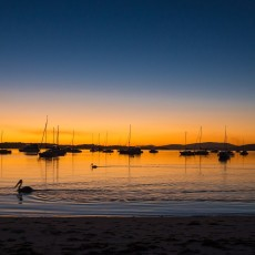 【澳大利亚】你眼里流过南半球最璀璨的星河(下)
