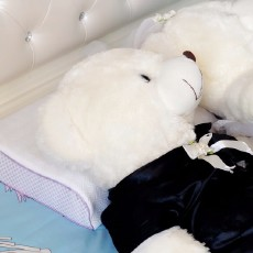好睡眠从好枕头开始 | 3D蜂巢释压枕测评
