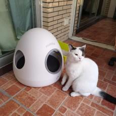 moestar萌王星 智能寵物冷暖窩試用報告