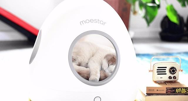 快來看!這臺智能冷暖寵物窩征服了一只最高傲、最挑剔的貓