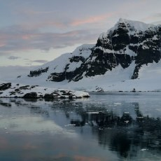 「南極VLOG」三大旗艦挑戰冰天雪地,性能依舊穩嗎?