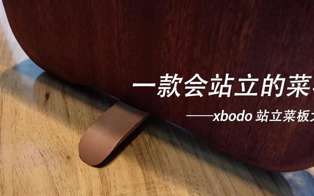 一款会站立的菜板——xbodo 站立菜板大号