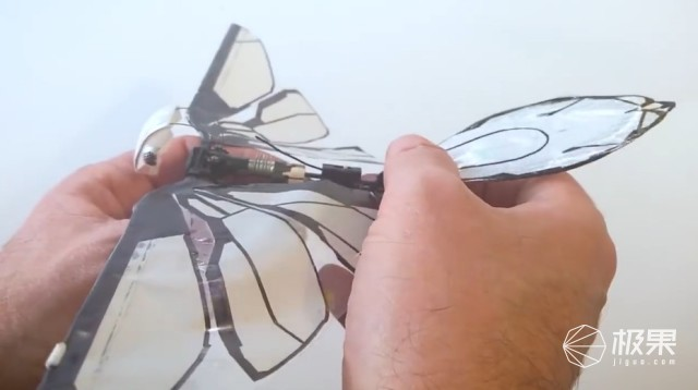 """玩大了!法国人造出""""恐怖蝴蝶"""",能动能飞真到毛骨悚然..."""