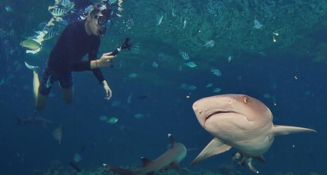 斐济,不慌不忙,这才是生活应有的样子