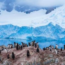 南极:梦的远方,且吟且看且徐行(三)