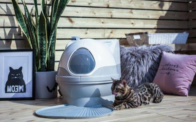 CatGenie貓潔易全自動貓廁所