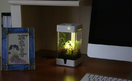 擺在桌上的花園:OrchidBox,智能控溫控水還擬光