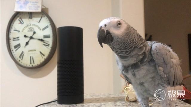 上廁所、洗澡、滾床單……你家里的Siri,正在24小時偷聽你?