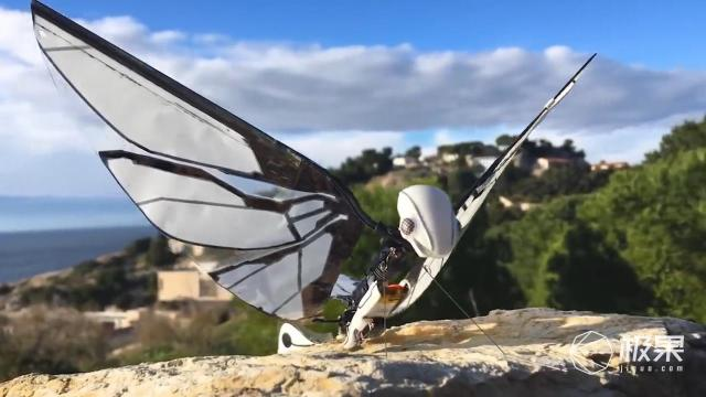 新玩具!人类造出仿生蝴蝶机器人,500块就能抱回家?