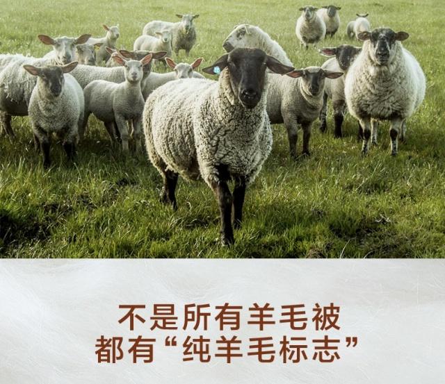 CRIA(可瑞乐)进口纯羊毛