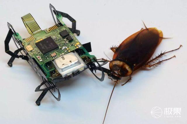 人工蟑螂、蚯蚓、蛇…劳斯莱斯搞的这些奇葩发明,看得我隔夜饭都要吐了