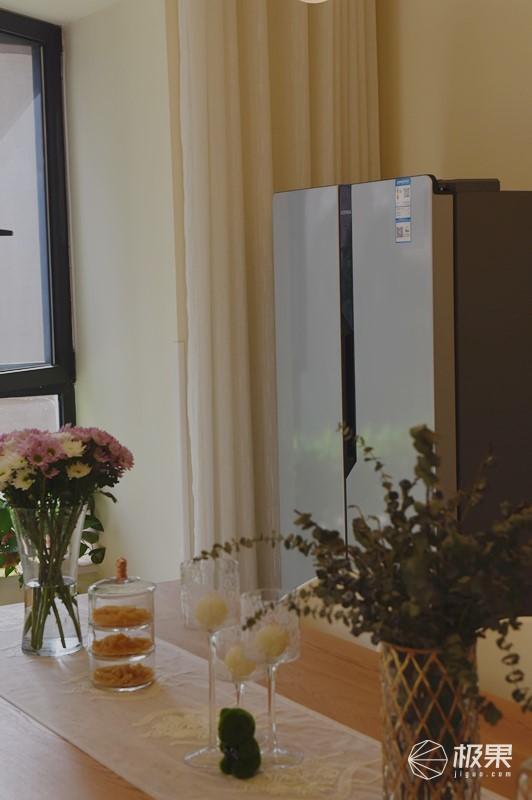 小户型也能有大冰箱,保鲜好到竟还能养鱼!