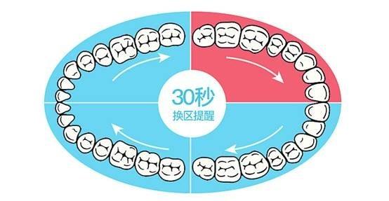 牙周炎、牙齿敏感试试德国SEEUDAY电动牙刷SU-3
