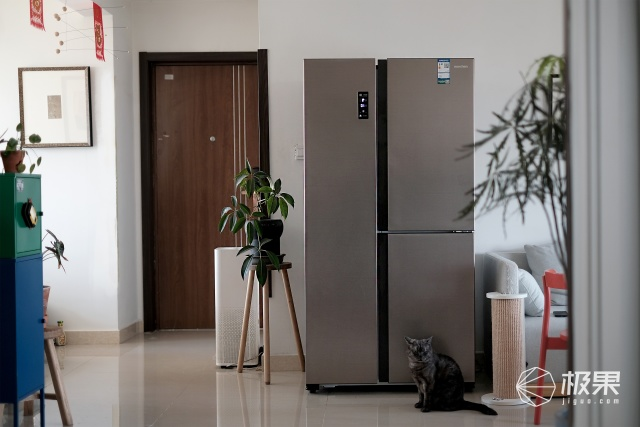 京品評測丨論區分冰箱使用區域的重要性,一臺在手,養鮮全能,串味全無!