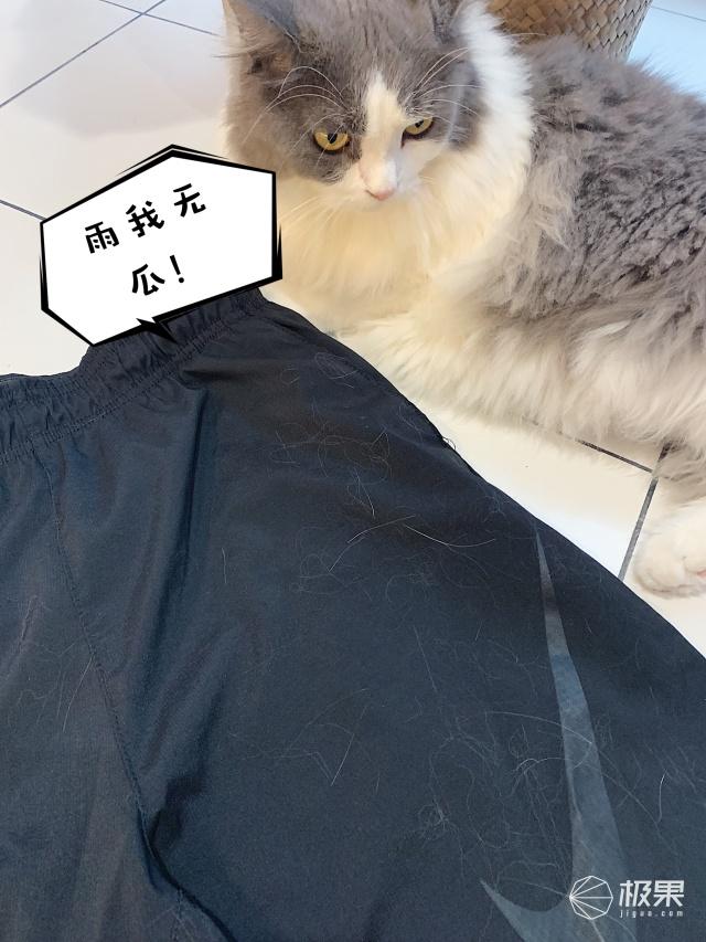 「體驗」烘干速度快的飛起,還能過濾寵物毛!這款神器讓你隨時穿新衣!