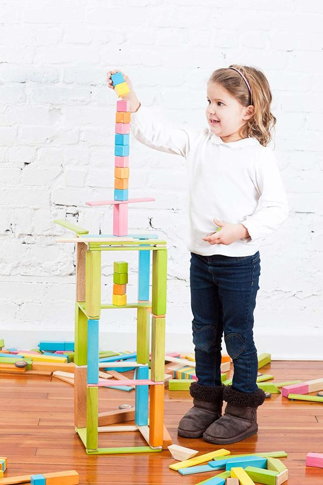 Tegu木质玩具