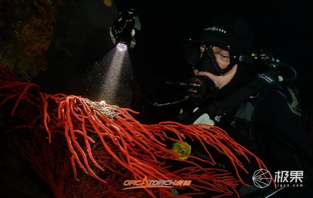 水下手电筒照明的发展丨OrcaTorch潜水
