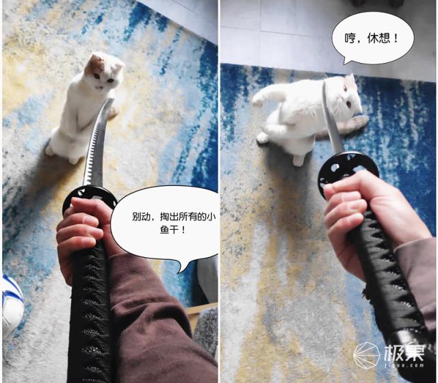 moestar萌王星智能宠物冷暖窝